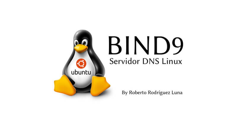 Servidor DNS Linux